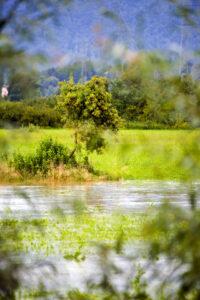 Reka Ložnica